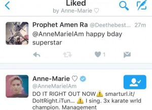 annemariehappybday