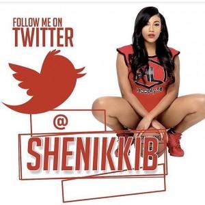 NikkiBTwitter